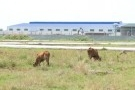 Hưng Yên, Hải Dương lọt 'top' danh sách 'đen' các khu công nghiệp