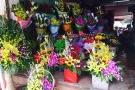 Hoa 8/3: Giá cao, ít hoa nhập ngoại