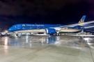 Hai siêu máy bay của Vietnam Airlines phải hoãn giờ bay vì chim trời