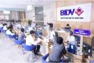 Chính thức ngã ngũ phương án trả cổ tức BIDV