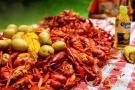 Tôm hùm cấm nuôi ở Việt Nam bị biến thành đặc sản