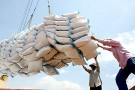 Bộ Công Thương trả lời vụ 'lót tay' 20.000 USD giấy phép xuất khẩu gạo