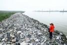 """Đình chỉ 3 thanh tra để làm rõ chuyện """"cát tặc"""" ở Bắc Ninh"""