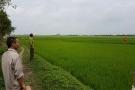 Thủ tướng yêu cầu kiểm tra việc lấy đất nông nghiệp làm du lịch tại Vĩnh Phúc