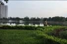 Kinh hoàng với cảnh rác thải ngập hồ Đền Lừ