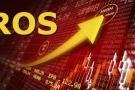 Khối ngoại bán ròng gần 240 tỷ đồng cổ phiếu ROS trong phiên 24/5