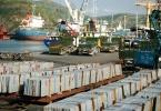 Vì sao Ủy ban Kiểm tra TW yêu cầu thanh tra toàn diện Cảng Quy Nhơn?