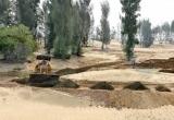 Thông tin chính thức vụ 'phá hơn 100 ha rừng để... kịp thi hoa hậu'