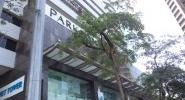 Cảnh hiu hắt bên trong trung tâm mua sắm Parkson Hà Nội