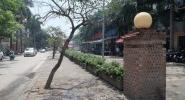 Lãnh đạo Chính phủ yêu cầu Hà Nội làm rõ vụ 'biến hóa' kỳ ảo 6000m2 đất