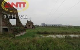 KCN Cẩm Điền – Lương Điền: VSIP muốn sớm hoàn thành việc chuyển nhượng