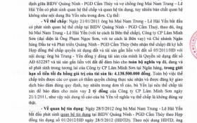 """Bị """"tố"""" đảo nợ, BIDV Quảng Ninh nói gì?"""