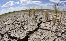Hỗ trợ hơn 150 tỷ đồng cho 8 địa phương khắc phục hậu quả hạn hán