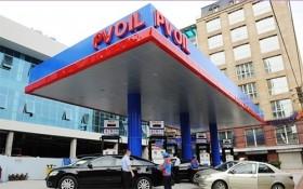 """Chủ tịch Hội đồng thành viên PV Oil """"quỵt"""" 250.000 cổ phiếu?"""