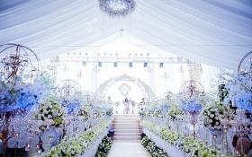 Cận cảnh đám cưới 2 tỷ xa hoa trong lâu đài gà vàng của đại gia buôn sắt Hà Nội