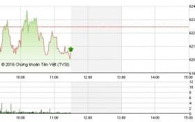 Chứng khoán sáng 19/5: HAG-HNG hết sóng, VN-Index tiếp tục quay đầu