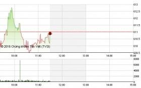 Chứng khoán sáng 24/5: Sắc xanh thắng thế, VN-Index vẫn mất điểm