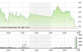 Chứng khoán chiều 25/5: Cổ phiếu dầu khí cứu VN-Index