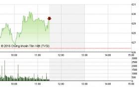 Chứng khoán sáng 23/6: Cổ phiếu đầu cơ hút hàng