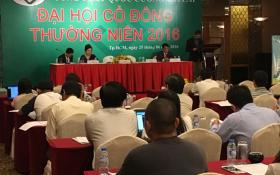 Chủ tịch Quốc Cường Gia Lai 'đe dọa' hủy niêm yết cổ phiếu