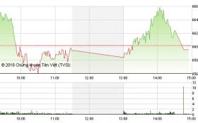 Chứng khoán chiều 21/7: HSG giảm sàn, VN-Index chính thức chia tay mốc 660 điểm