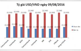 Tỷ giá USD/VND hôm nay (09/08): Ổn định