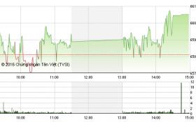 Chứng khoán chiều 17/8: Chốt lời mạnh cổ phiếu đầu cơ, VN-Index vẫn thẳng tiến mốc 660