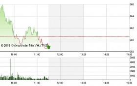 Chứng khoán sáng 18/8: VN-Index đảo chiều, cổ phiếu đầu cơ bị xả ồ ạt