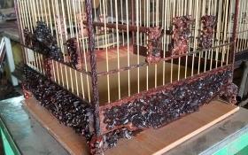 Những tuyệt phẩm ngàn USD nức tiếng giới chơi chim