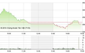 Chứng khoán chiều 15/9: Cổ phiếu đầu cơ thi nhau giảm sàn