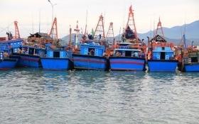 Đầu tháng 10, tiền hỗ trợ vụ Formosa sẽ tới tay người dân