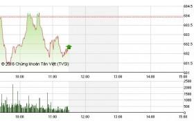 Chứng khoán sáng 10/10: Ngó lơ bluechip, dòng tiền hướng tới cổ phiếu thị trường