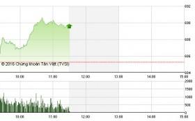 Chứng khoán sáng 14/10: Cổ phiếu đầu cơ giữ sóng, VN-Index tìm lại ánh hào quang