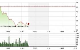 Chứng khoán sáng 24/11: Cổ phiếu lớn đồng loạt giảm mạnh, VN-Index mất mốc 680 điểm