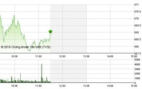 Chứng khoán sáng 1/12: Cổ phiếu họ dầu khí tăng trần sau thông tin từ OPEC