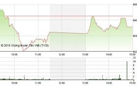Chứng khoán chiều 2/12: Bị khối ngoại ép, VN-Index giảm đáng tiếc