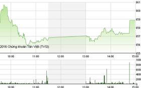 Chứng khoán chiều 8/12: STB bất ngờ khởi sắc, VN-Index hụt mốc 660 điểm vì ROS