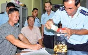 An Giang tìm chủ sở hữu 480 lượng vàng