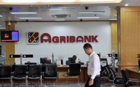 Agribank: Phải thu gần 300 tỷ đồng tham ô của cán bộ, nhân viên