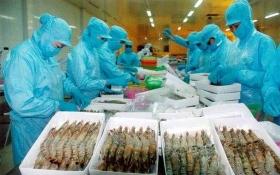 Bộ Công thương Việt Nam đề nghị Úc sớm bỏ lệnh cấm nhập khẩu tôm