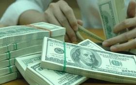 Tỷ giá USD/VND ngày 02/03: Tỷ giá trung tâm dựng ngược