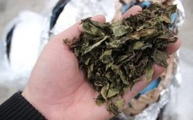 Nhiều lô lá khô nghi ma túy cực độc đổ về sân bay Nội Bài