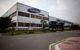 Samsung Display Việt Nam bất ngờ báo lỗ nghìn tỷ