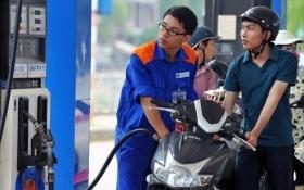 Trình đề xuất tăng thuế xăng dầu lên tối đa 8.000 đồng/lít