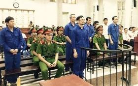 Cựu Tổng Giám đốc vay tiền, trồng rừng ảo lĩnh án tù chung thân