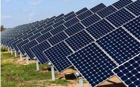 Cách mạng năng lượng sạch đang diễn ra và không thể ngăn chặn