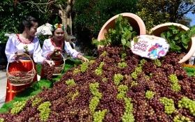 Du khách mê mẩn với lễ hội rượu vang Sun World Ba Na Hills