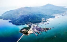 Vụ đào xới Sơn Trà: Đà Nẵng triệu tập cuộc họp khẩn