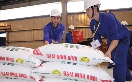 Yêu cầu kiểm điểm sếp Vinachem vì những sai phạm tại dự án đạm Ninh Bình