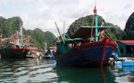 """Bảo hiểm tàu cá, phân khúc """"khó xơi"""""""